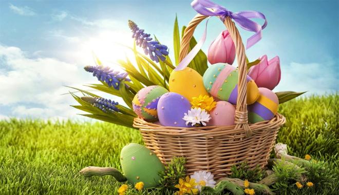 """Pasqua floreale: l'Istituto Comprensivo """"Elio Vittorini"""" festeggia"""