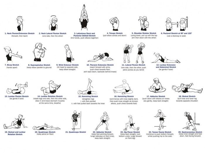 Stretching importante per il miglioramento muscolare
