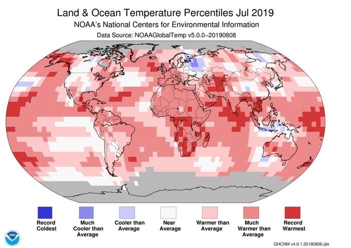 Luglio 2019 il mese più caldo da 140 anni.