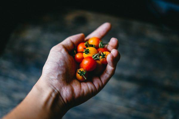 Colombo scopre il Nuovo Mondo: cambiò le nostre abitudini alimentari