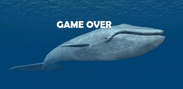 """"""" Blue Whale, la verità e la tutela del minore """" a Palazzo D'Amico"""