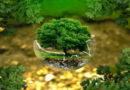 Un pennello ecologico fatto a mano